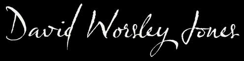 'David Worsley Jones' - website's logo