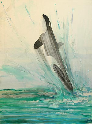 Killer whale jumping